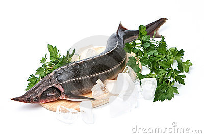 Raw sturgeon with greens