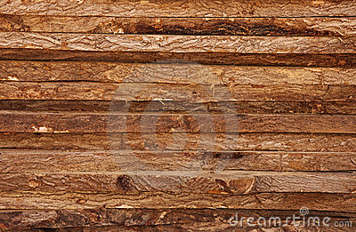 Raw Timber Wood Logs Texture