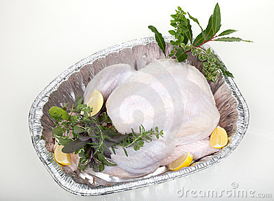 Raw turkey on white