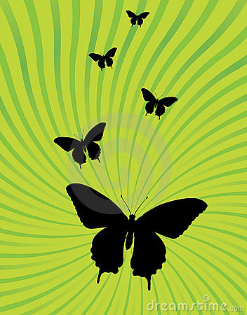 Ray burst and butterfly background vector