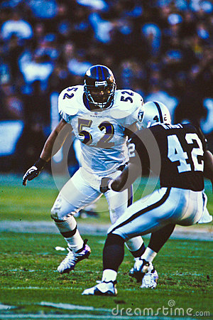 Ray Lewis Baltimore Ravens Editorial Photography