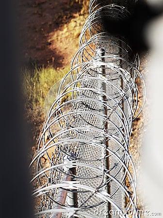 Razor wire fence.