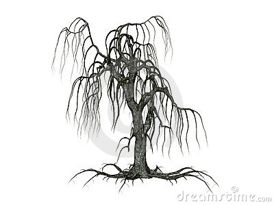Árbol con las ramificaciones de caída