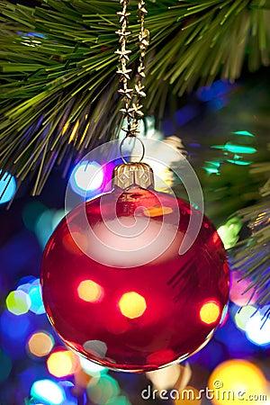 Árbol de navidad y luces