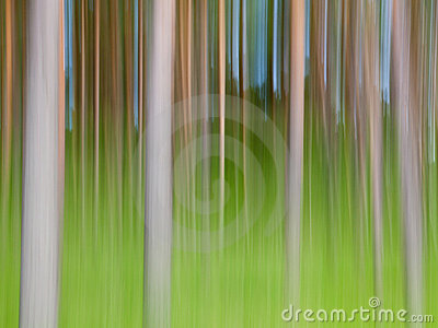Árboles abstractos