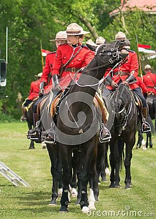 RCMP på häst Redaktionell Bild