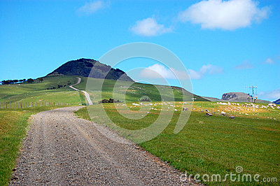 Área rural Nova Zelândia da estrada do cascalho