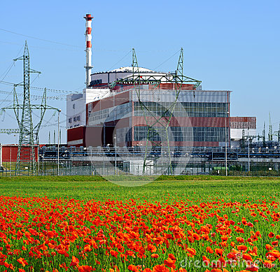 Reactor of nuclear power plant