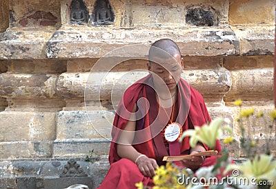 Reading tripatrika at Bodh Gaya Editorial Image