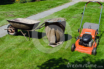 Mower and wheelbarrow to throw the grass