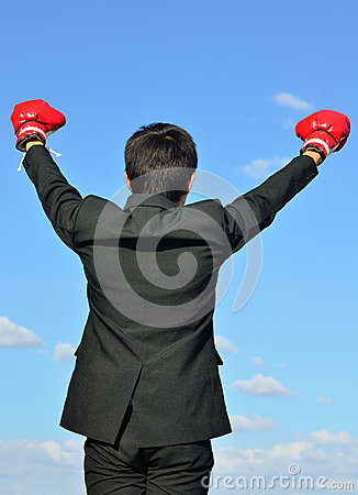 Free Ready To Fight Over Blue Sky Royalty Free Stock Photography - 28562307