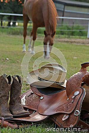 Free Ready To Saddle Up Stock Images - 1079434