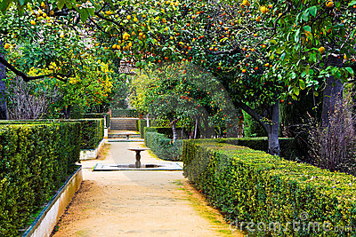 Real Alcazar Gardens in Seville Spain