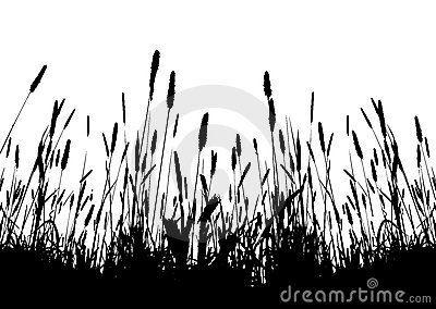 Real grass vector silhouette