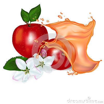 Realistic apples with a splash of juice Vector Illustration