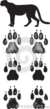 Realistic cheetah tracks or footprints