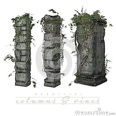 Vines growing on old columns
