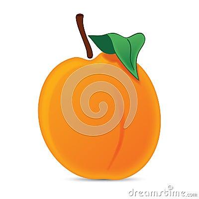 Realistic orange juicy peach