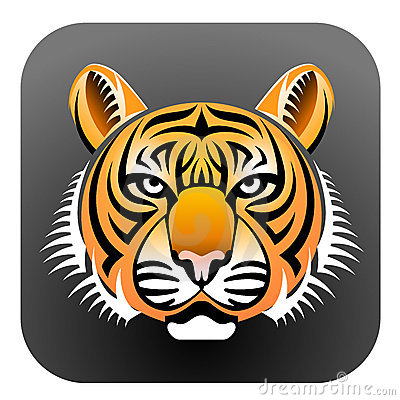 Realistic Tiger s face