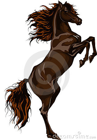 Rear horse