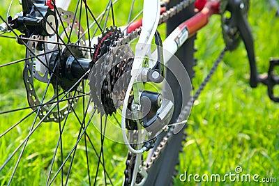 Rear racing bike cassette