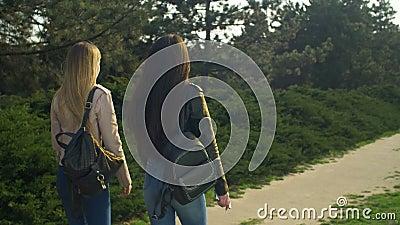 Elegant girls strolling in parkland at sunset stock video footage