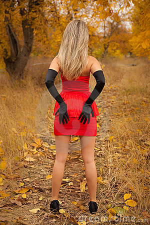 Rear View Of Pretty Young Girl In Red Dress Royalty Free