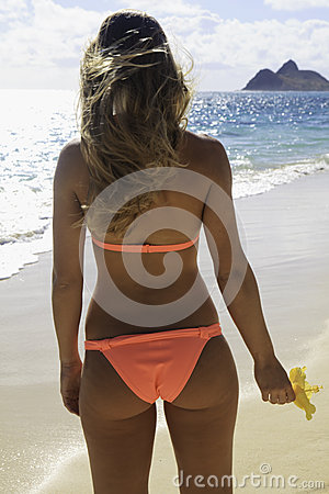 Rear view of young woman in bikini