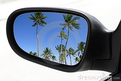Rearview car driving mirror tropical palm trees