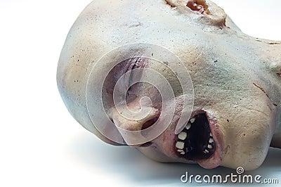 Recreation foam of a human head