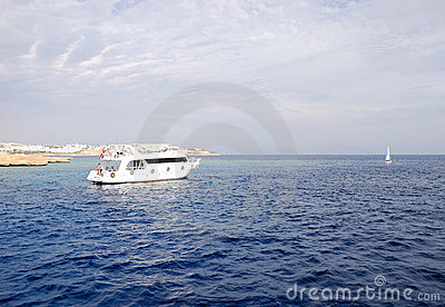 Recreational yachts with divers near Red Sea reef
