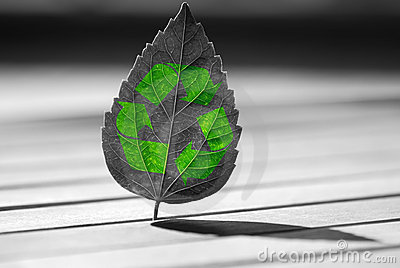 Recycle icon on  leaf