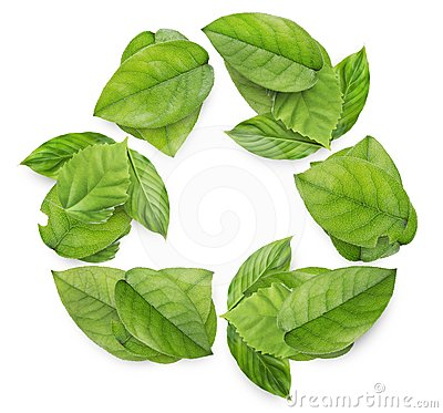 Recycling symbol from leaves