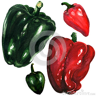 Free Red And Green Peppers On White Background Royalty Free Stock Photo - 50354545