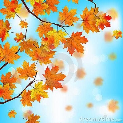 Free Red And Yellow Leaves Against Blue Sky. EPS 8 Royalty Free Stock Photo - 20254245
