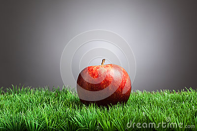 Red apple in grass, gray background