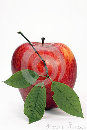 Red apple with green leaflets