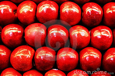 Red Apple line up