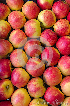 Free Red Apples. Stock Photo - 34172130