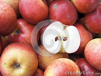 Red apples macro
