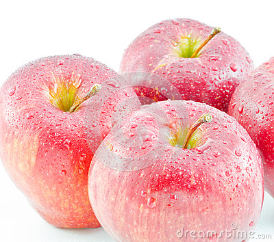 Red apples were  on white background
