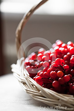 Red ash in basket