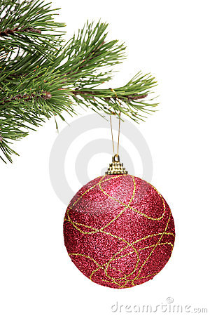 Red ball hanging on a christmas tree branch