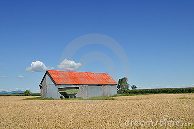 Red barn in the fields
