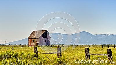 Red Barn, Golden Green Fields, Oregon