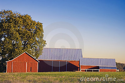Red Barn and Pasture