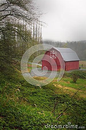 Red Barn in Rain
