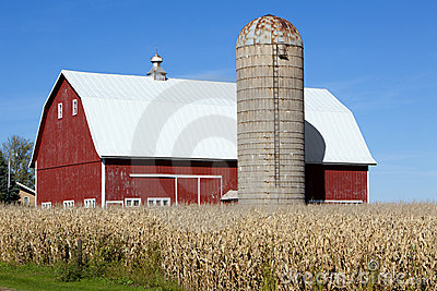 Red Barn, Silo and Corn Field