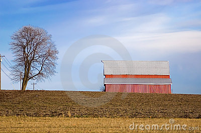 Red Barn and Tree on Winter Farmland