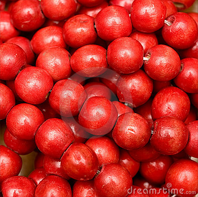 red-beads-thumb7583406